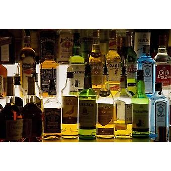 Bottles of Liquor De Luans Bar Ballydowane County Waterford Ireland Poster Print by Panoramic Images (16 x 11)