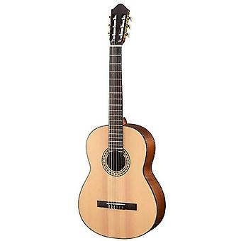 Walden n550e w/ gig bag natura solide épinette supérieure nylon classique-électrique guitare guitare - open pore satin naturel