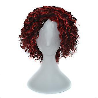 Γυναίκες μακριά μπούκλα μαλλιά περούκα γκρι