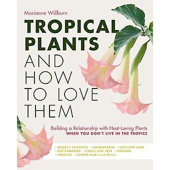 Tropical Plants and How to Love Them Building a Relationship with HeatLoving Plants When You Don't Live In The Tropics  Angels Trumpets    Gingers  Hibiscus  Canna Lilies and More