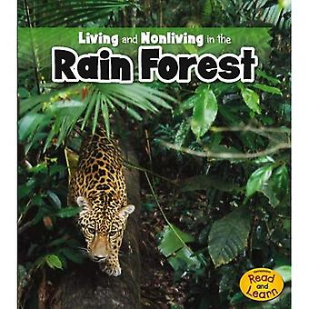 Living and Nonliving in the Rain Forest