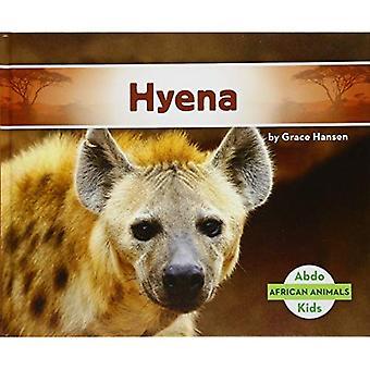Hyena (African Animals)