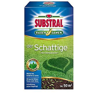SUBSTRAL® The Shaded Lawn Seed, 1 kg