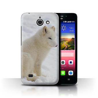 STUFF4 Case/Cover for Huawei Ascend Y550 LTE/White Arctic Fox/Arctic Animals