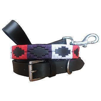 Carlos diaz genuine leather  polo dog collar and lead set cdhkplc37