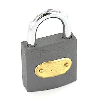 Securit Tricircle Iron Padlock Brass Cylinder