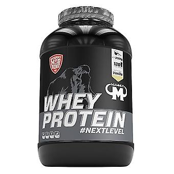 Mammut Whey Protein Iced coffee 3000 gr