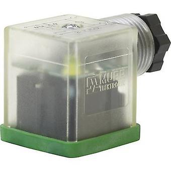 Murr Elektronik 7000-29805-0000000 SVS Eco zwart, transparant aantal pinnen: 3
