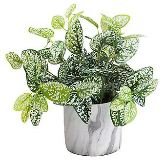 Hill Interiors Variegated Artificial Nerve Plant