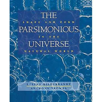 The Parsimonious Universe  Shape and Form in the Natural World by Hildebrandt & Stefan