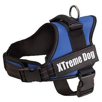 Arquivet Harnais pour Chiens Xtreme Dog Bleu
