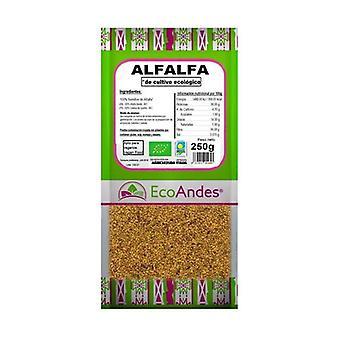 Alfalfa frø 250 g