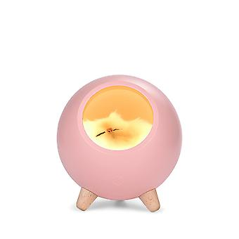 Cute Small Night Light Small Pet House Atmospheres Light Usb Charging Girl Dormitory Bedroom