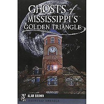 Spöken av Mississippis gyllene triangeln (hemsökta Amerika)