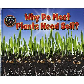 Why Do Most Plants Need Soil? (Down & Dirty)