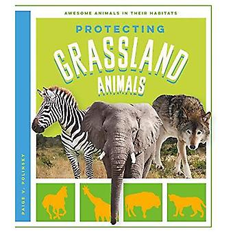 Protecting Grassland Animals (Awesome Animals in Their Habitats)