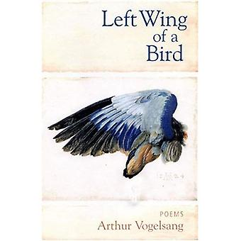 Left Wing of a Bird