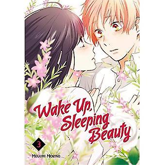 Réveillez-vous, Sleeping Beauty 3