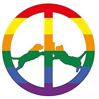 Hype Williams - Rainbow Edition [Vinyl] USA import