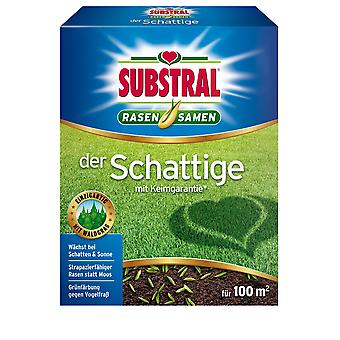 SUBSTRAL® The Shaded Lawn Seed, 2 kg
