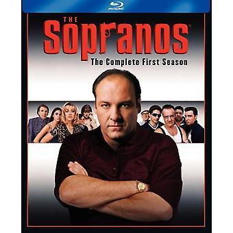 Sopraner - The Sopranos: The första säsong [5 skivor] [Blu-ray] [BLU-RAY] USA import