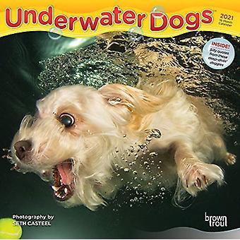 تحت الماء الكلاب 2021 مصغرة 7X7 التقويم بواسطة براونتروت