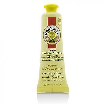 Roger & Gallet Fleur D'Osmanthus Creme Mains & Ongles 30 ml