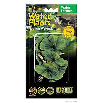 Exo Terra Floating plants Lettuce 15 cm (Reptiles , Decoration , Artificial Plants)