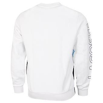 Lacoste Mens 2021 SH6904 Striped Brushed Fleece Long Sleeve Classic Fit Sweater