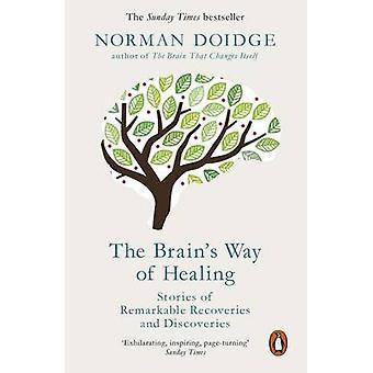 الطريقة في الدماغ للشفاء-قصص من المبالغ المستردة ملحوظا والقرص