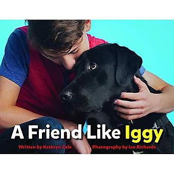 A Friend Like Iggy
