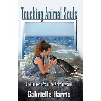 Touching Animal Souls  Developing Awareness through the Animal World by Harris & Gabrielle