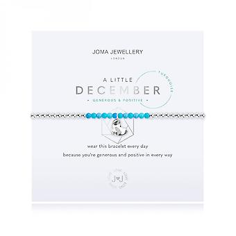 Joma Sieraden Een beetje geboortesteen december turquoise zilver 17,5 cm stretch armband 3471