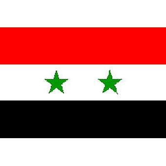 Syrië/Syrisch vlag 5 ft x 3 ft met oogjes voor verkeerd-om