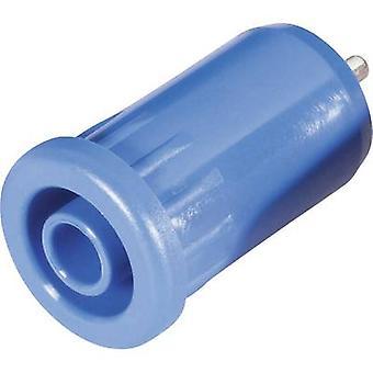 Schnepp BU 4800 bl Safety jack socket Socket, vertical vertical Pin diameter: 4 mm Blue 1 pc(s)