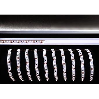Pasek LED elastyczny 3528-120-12V 25W 6500K 3m B 8mm wybieralny ściemniania biały IP20
