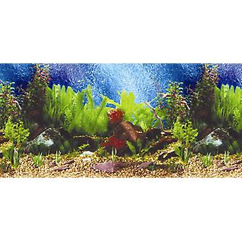 Sandimas Poster Doble Tropical Blue (60C) (Peces , Decoración , Fondos)
