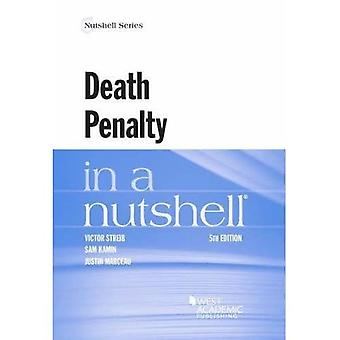 Todesstrafe in a Nutshell (Nutshell-Reihe)
