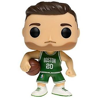 Gordon Hayward USA import
