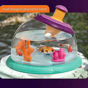 Magic Killifish Egg Soil Tank Science Insect Plants Enlarge Viewer Observation