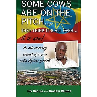 There's some cows on the pitch - they think it's all over...it is now
