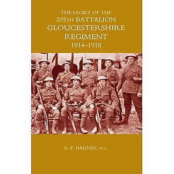 Story of the 2/5th Battalion the Gloucestershire Regiment: 1914-1918