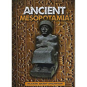 Ancient Mesopotamia by Madeline Tyler - 9781786375049 Book