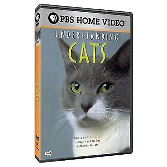 Understanding Cats with Roger Tabor [DVD] USA import