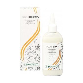 Chestnut and Olive Moisturizing Treatment - dry hair 150 ml