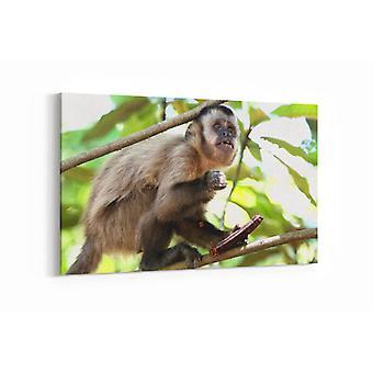 Malerei - Affe unter den Bäumen - 90x60cm