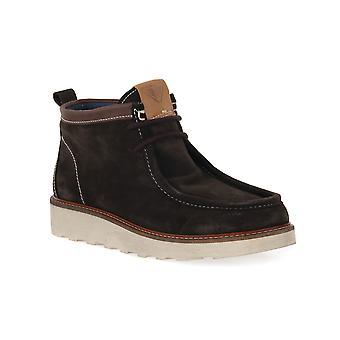 Docksteps tdm oakland 2040 shoes