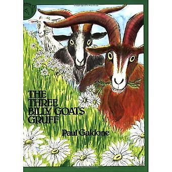 The Three Billy Goats Gruff [With CD] (Read Along Paperback & Audio)