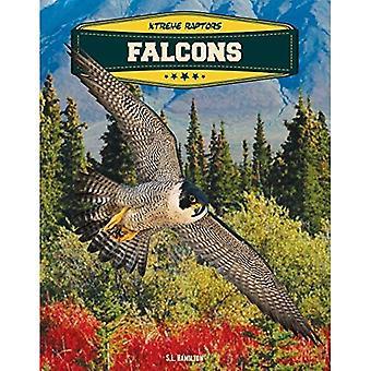 Falcons (Xtreme Raptors)