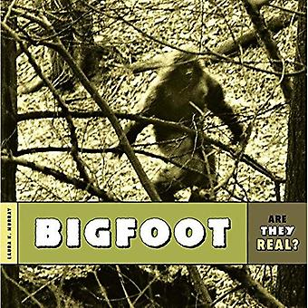 Bigfoot (Are They Real?)
